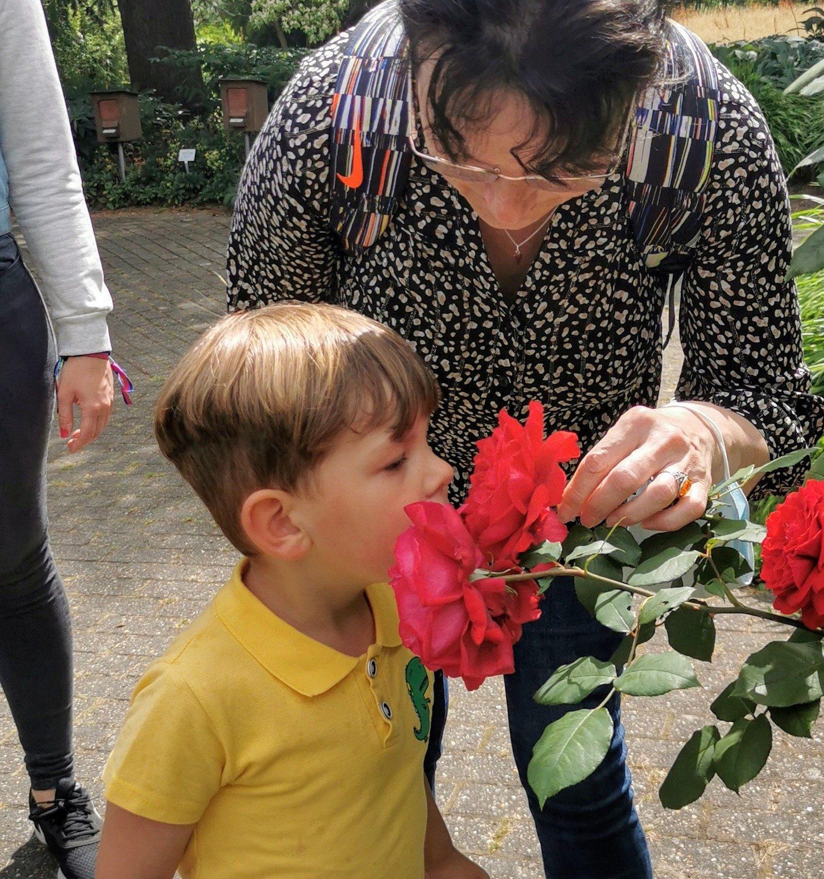 Junge schnuppert an Rose.